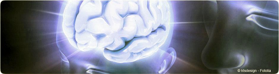 Rencontre neurologie 2012
