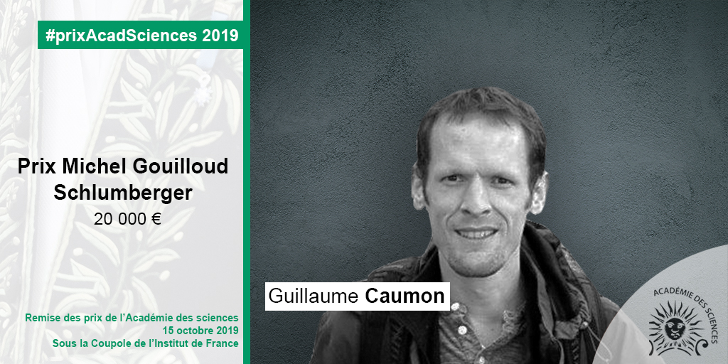 Guillaume Caumon