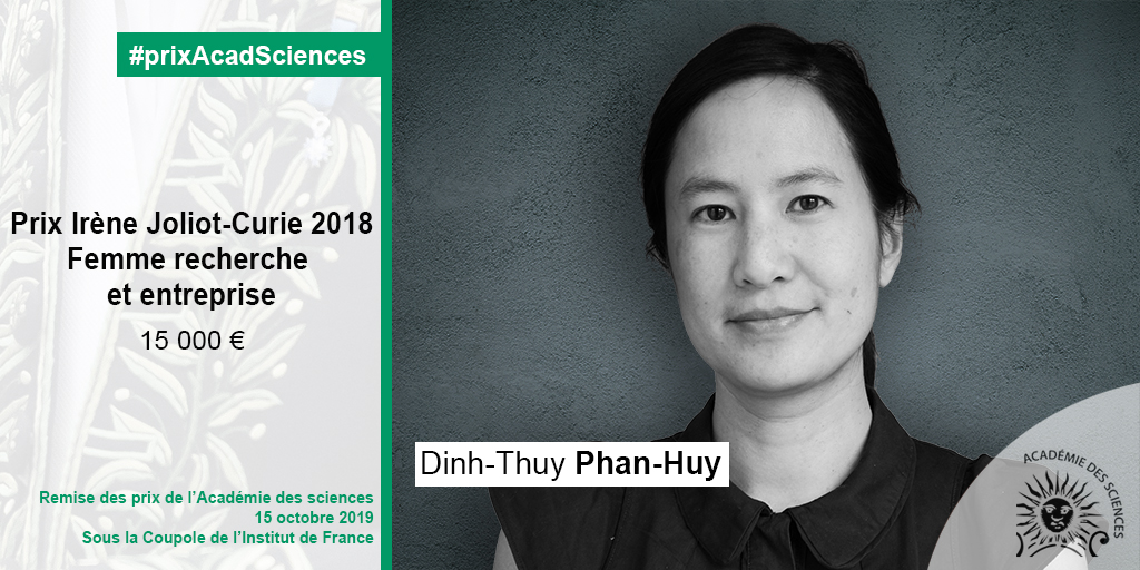 Dinh-Thuy Phan-Huy