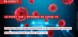 épidémie covid-19