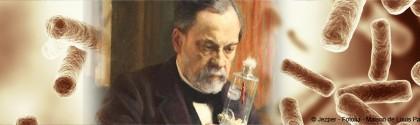 Pasteur et bactéries